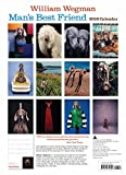 Image de Man's Best Friend 2016 Calendar