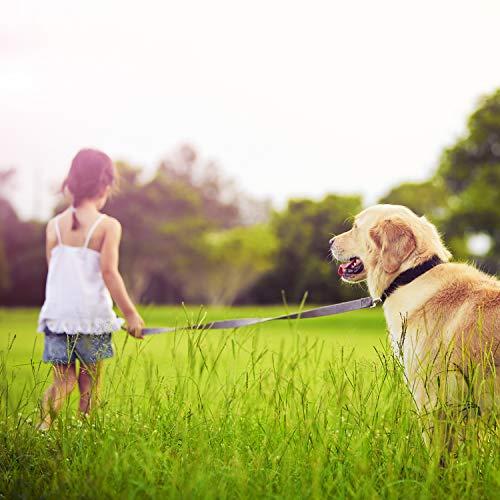 VITAZOO Premium Hundeleine in Graphitschwarz, massiv und verstellbar in 4 Längen (1,4 m – 2,1 m), für große und kräftige Hunde | Hundeführleine, Doppelleine, geflochten mit 2 Jahren Zufriedenheitsgarantie - 4
