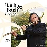Flute Partita in A Minor, BWV 1013 (Arr. R. Najfar for Alto Flute): I. Allemande