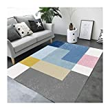 J.SCT-6 European Large Carpet Home Door Door mat Kunststoff-Drahtring Anti-Rutsch-Matte-Mate-Teppich-Qualität dickend,1,100 * 160CM