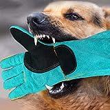 Rziioo Animal Handling Handschuhe Anti-Biss/Kratzer Gardening Wildtiere Schutzhandschuhe Für Cat Dog Vogel Schlange Papagei Eidechse,Green,1Pair
