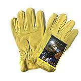 Gazechimp Kurz Hitzebeständige Handschuhe Schweißerhandschuhe Arbeitshandschuhe Sicherheitshandschuhe für Schweißen Hellgelb Test