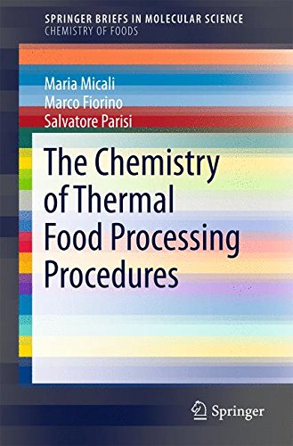 The Chemistry of Thermal Food Processing Procedures (SpringerBriefs in Molecular Science)