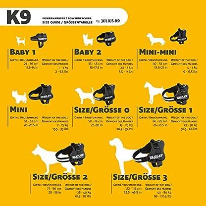 Julius-K9, 162P2, Powerharness, Size: 2, Black 5