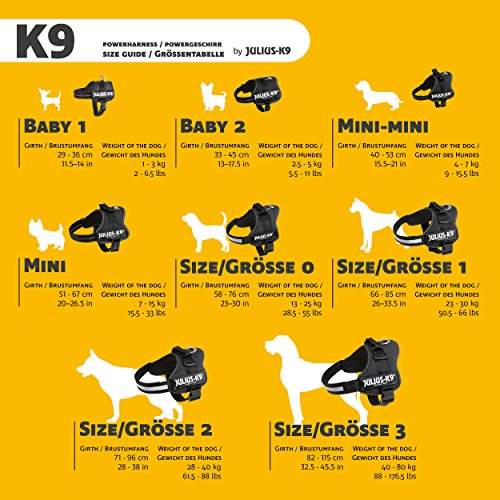 Julius-K9 162P3 K9 PowerHarness for Dogs, Size 3, Black
