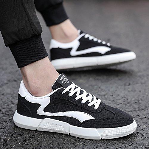 FEIFEI Hommes Chaussures Printemps Et Automne Loisirs Confortable Et Respirant Plate Chaussures 2 Couleurs (Couleur : Noir, taille : EU42/UK8.5/CN43)