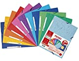 Exacompta 55510AMZE - Set di 11 cartelline con elastici a 3 alette, in carta lucida (10 + 1 grati), 24 x 32 cm, 400 g, 10 colori assortiti Unico colori assortiti