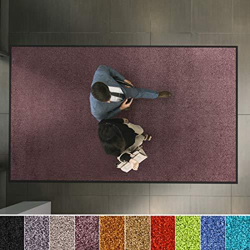 etm Hochwertige Fußmatte | schadstoffgeprüft | bewährte Eingangsmatte in Gewerbe & Haushalt | Schmutzfangmatte mit Top-Reinigungswirkung | Sauberlaufmatte waschbar & rutschfest (135x200 cm, Lila)