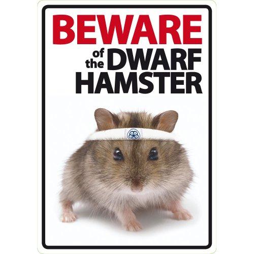 Vorsicht vor der Zwerg Hamster A5Schild