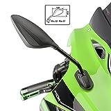 Motorrad Spiegel Puig RS2 Yamaha YZF-R6 99-05 (Paar) Carbon Look