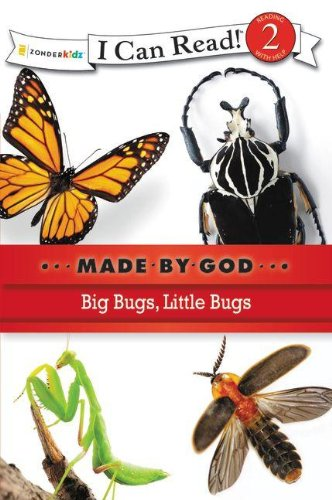 Made by God : big bugs, little bugs.