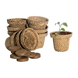 Forgreen Eco-Friendly Coir Pot, 2.5 Inch, Seedling Cups With Coco Peat Coins, Set Of 10