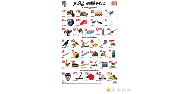 Buy tamil alphabet front back educational wall charts book buy tamil alphabet front back educational wall charts book online at low prices in india tamil alphabet front back educational wall charts expocarfo Image collections