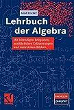 Lehrbuch der Algebra: Mit lebendigen Beispielen, ausführlichen Erläuterungen und zahlreichen Bildern - Gerd Fischer