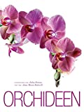 Orchideen: Alles Wissenswerte über die sinnlichste aller Blumen. Bildband der bezauberndne und sinnlichen Pflanze mit den unterschiedlichsten Arten in Groß- und Detailaufnahmen