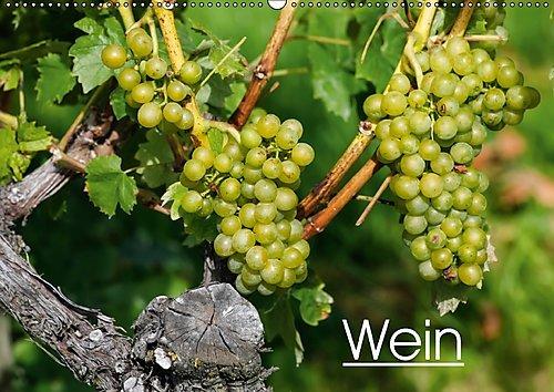 Preisvergleich Produktbild Wein (Wandkalender 2017 DIN A2 quer): Farbige Fotografien rund um das Thema Wein. (Monatskalender, 14 Seiten ) (CALVENDO Lifestyle)