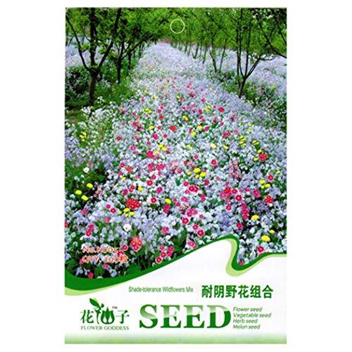 Garten, Wildblumen (Fenido+Samenhaus Mixed Wildblumen Kombination Samen Jährliche Mehrjährige Blume Pflanzensamen Garten Blumensamen)