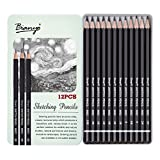 #3: Bianyo Artist Quality Fine Art Drawing & Sketching Pencils (3H, 2H, H, HB, B, 2B, 3B, 4B, 5B, 6B, 8B, 10B), 12 Piece Set