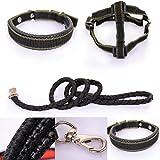 NK's Strore 3 in 1 Hundehalsband + Hundegeschirr Hundeleine +, schwarze Farbe, Nylon-Material. schwarz (Black, 2.5)