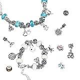 LEBENSWERT Charm Armband Kit DIY Handwerk Europäische Perle überzogen mit Silber Kette Schmuck Geschenk Set für Mädchen Teens(Leuchtend)