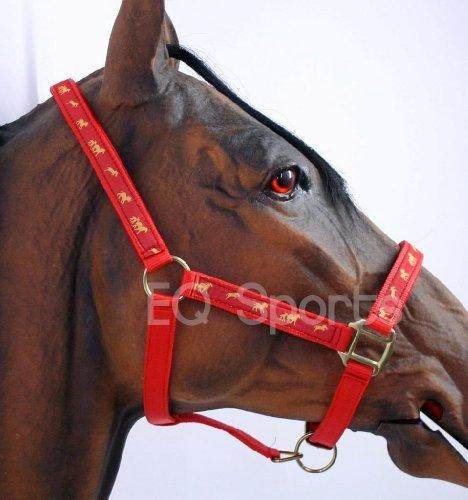 Ribbon Pony-halter (Knight Rider Padded Horse Headcollar Halter With Horse Ribbon Pony Red)
