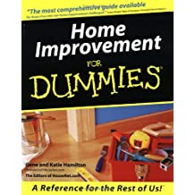 Home Improvement For Dummies (For Dummies Series)