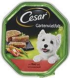 Cesar Hundefutter Nassfutter Gartenvielfalt Rind und Gemüse, 14 Schalen (14 x 150 g)