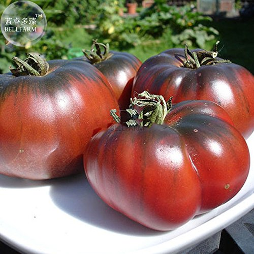 Pinkdose® 2018 Heißer Verkauf Davitu Heirloom Riesige Schwarze Krim Tomate Hybrid F2 Gemüse, 100 Samen, Super Süße Früchte E3835