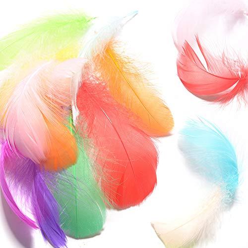 Schmuck Handwerk Kostüm - FORMIZON 600 Stück Bunte Federn, Naturfedern 8-12 cm Natürliche Gänsefeder Ungiftig Geruchlos, Deko-Federn für Kinder DIY Handwerk Hochzeit Masken Hüte Kostüme Party Karneval Halloween