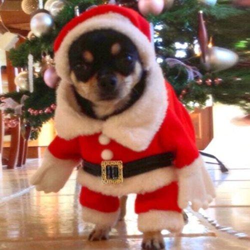 Nysunshine Weihnachtsmann-Kostüm für Hunde und Katzen, XL