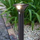Suguoguo Solar-Rasenleuchten, LED Edelstahl Human Body Induction Garden Spike Light Decorative Lights für Home Yard Rasenmäher Pfad 1Pcs,warmwhitelight