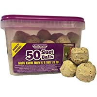Suet To Go Insect Balls in Tub