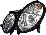 HELLA 1EL 008 369-091 Halogen Hauptscheinwerfer, Links, Ohne Kurvenlicht, mit Gasentladungslampe, mit Glühlampen, mit Stellmotor für LWR, mit Vorschaltgerät