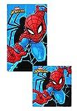 Theonoi 2 Teile - Kinder Handtuch Set - wählbar: Paw Patrol Frozen Ladybug Thomas Spiderman - 100%...