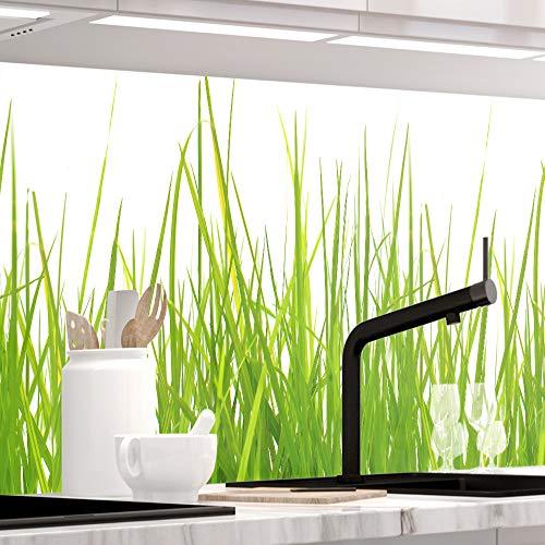nrückwand selbstklebend - Wiesen Gras - 1.5mm, Versteift, alle Untergründe, Hart PVC, Premium 60 x 80cm ()