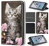 CoverHeld Hülle für Samsung Galaxy S5 Mini Premium Flipcover Schutzhülle aus Kunstleder Flip Case Motiv (1251 Baby Katze Kätzchen Grau Weiß)