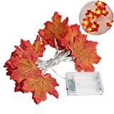 LEDMOMO Thanksgiving Dekorationen beleuchtet Herbst Garland 4M 20LED Ernte Lichterketten Thanksgiving Decor Geschenk