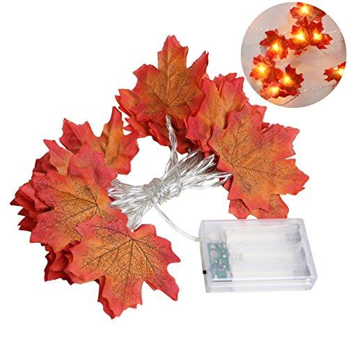 LEDMOMO Thanksgiving Dekorationen beleuchtet Herbst Garland 2M 20LED Ernte Lichterketten Thanksgiving Decor Geschenk