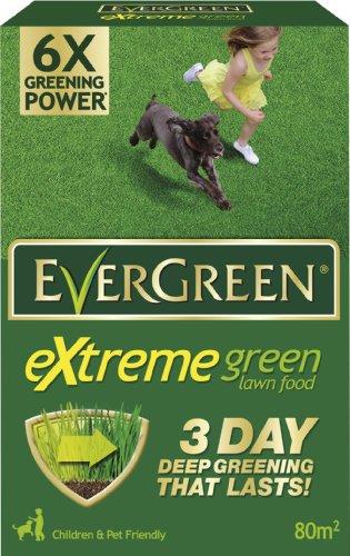 evergreen-extreme-green-carton-28-kg