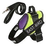 EAST-BIRD ohne Pull Hundegeschirr, Atmungsaktiv und Verstellbar, inkl. Leine ist, für Small Medium Big Dogs, Beste Wahl für Walking Service Hund