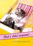 3 Stück Doppelkarte mit Kuvert Karte Geburtstagskarte Geburtstag vergessen Kätzchen