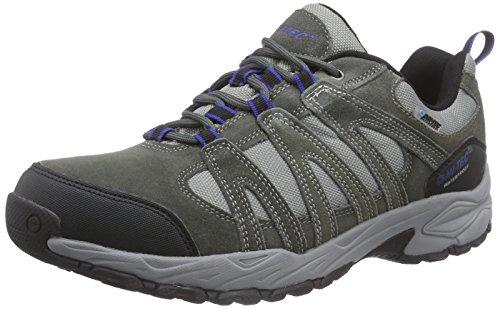 Hi-Tec Alto Ii Low Wp, Chaussures de randonnée homme Gris (Charcoal/Cobalt)