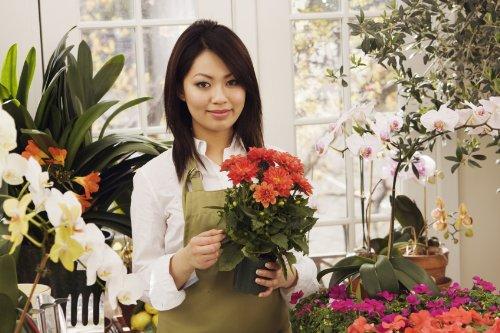plantilla de plan de negocios para abrir una florería en español! por Kelly Lee