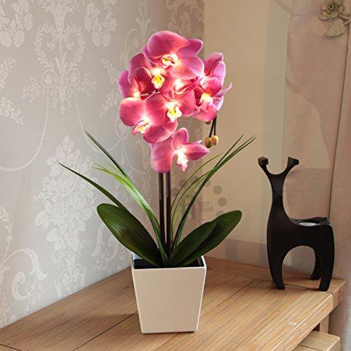 orchidee-blumen-licht-mit-ubertopf-weiss-batteriebetrieben-56cm-pink