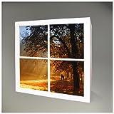 Möbelsticker für IKEA EXPEDIT (Kallax) Regal 67,8x67,8cm mit Motiv: Goldener Herbst