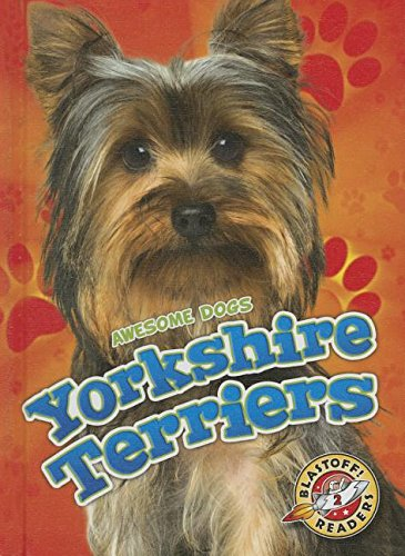 Yorkshire Terriers (Awesome Dogs)