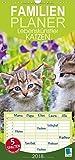 Familienplaner 2018 Lebenskünstler Katzen mit 5 Spalten (Familien-Kalender Familien-Planer Spaltenkalender Wandkalender in 21 x 2 x 45 cm)