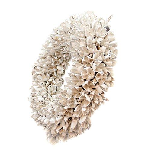 Naturkranz Deko-Kranz groß Ø 35cm in weiß, gefertigt aus Bakuli-Früchten. Türkranz zum hängen oder als Tischdekoration im Shabby chic Design, zeitloses Wohnaccessoires als Natur-Deco von Glaskönig