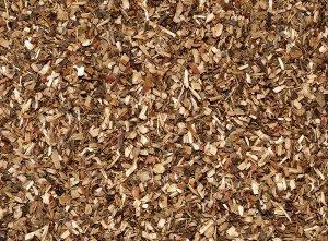 1kg - grüner Honeybush - pur - Südafrika - grüner Honigbuschtee