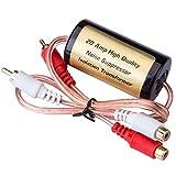 Mr. Ho Isolateur filtre anti bruit pour amplificateur auto voiture antiparasitage antiparasite (20A)...